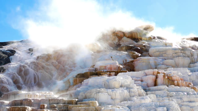 vídeos de stock e filmes b-roll de hd footage palette springs by mammoth hot springs in yellowstone - fonte termal