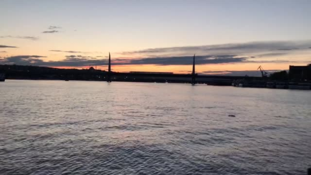 footage shows dolphins living at the marmara sea started their migration to the black sea for the summer amid covid-19 curfew in istanbul on may 25,... - istanbul stock-videos und b-roll-filmmaterial