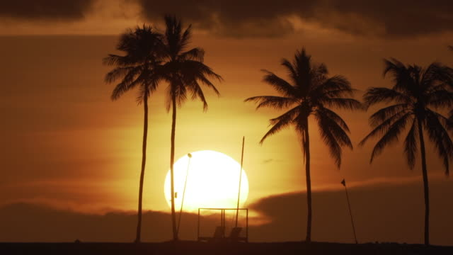 4k footage silhouette beach volleyball while golden time before sunset on beach with palm tree in phuket, thailand. - omega sun mirage stock videos & royalty-free footage