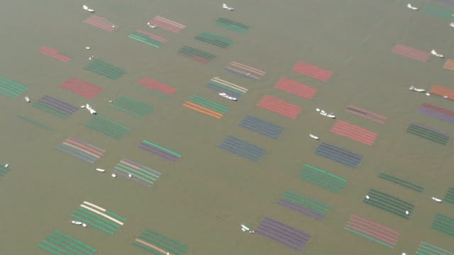 footage taken from a helicopter on october 17 japan shows colorful nets being set by fishermen in the ariake sea off the coast of saga prefecture in... - ariake sea stock videos and b-roll footage