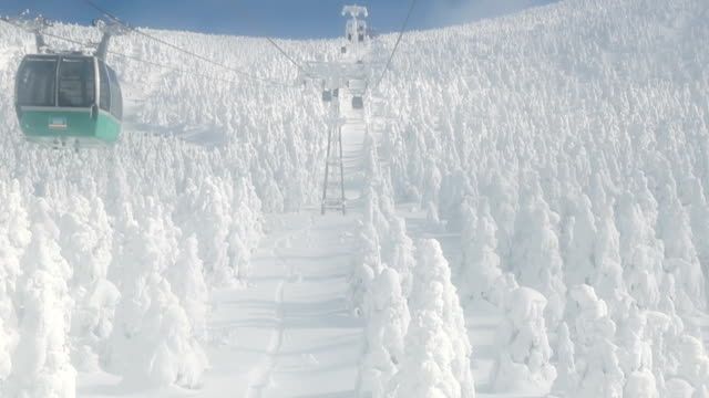 """Footage taken on January 18 shows skiers in the Zao Onsen ski resort area of Yamagata Japan among the """"ice monsters"""" formed there during the weekend..."""