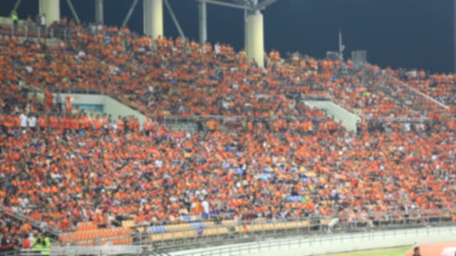 Football fans celebrate a goal. Unrecognizable crowd