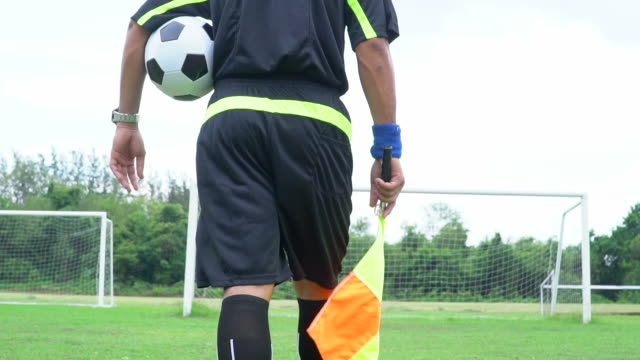 football soccer linsman - baseball player stock videos & royalty-free footage