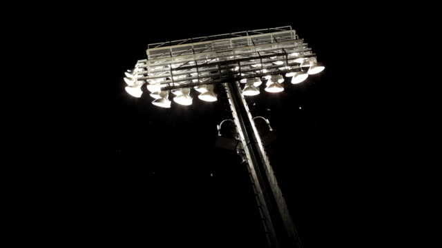 Football stadium lights shine in the dark sky surrounded with flying insects.