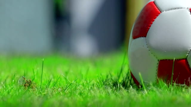 stockvideo's en b-roll-footage met footballl on grass. hd - extreme close up