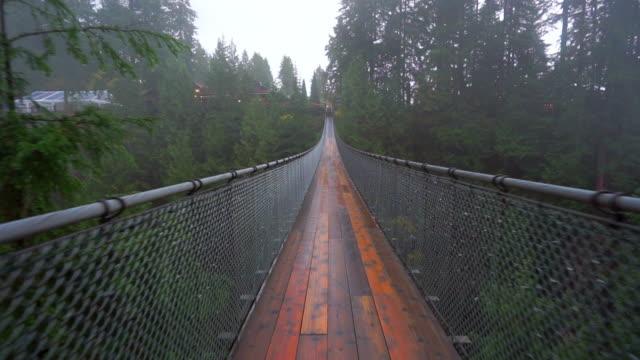 footbridge amidst green trees in forest during foggy weather - cheakamus lake, british columbia - garibaldi park stock videos & royalty-free footage