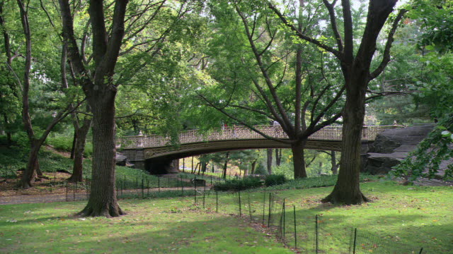 HA Footbridge over chain-link fence in Central Park, with trees shading the path / New York City, New York, United States