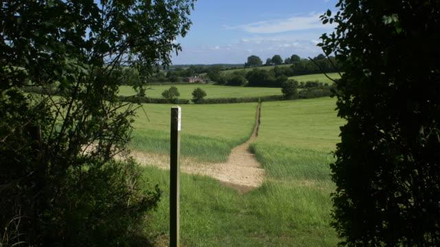 footpath across field of barley seen from gap in hedge.4k. - footpath stock videos & royalty-free footage