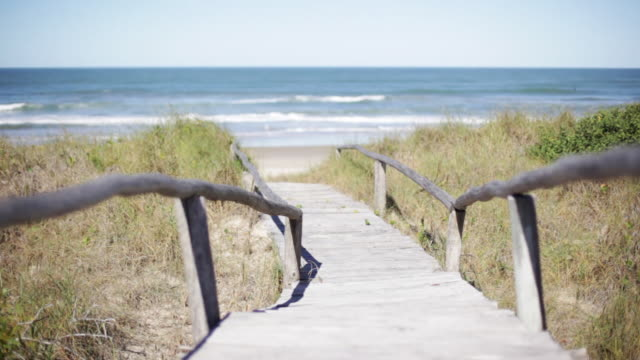 footpath leading to beach - pedestrian walkway stock videos & royalty-free footage