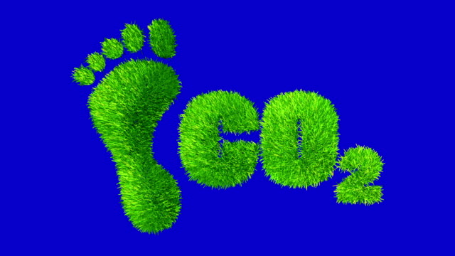 footprint and carbondioxide made with  grass. - footprint stock videos & royalty-free footage