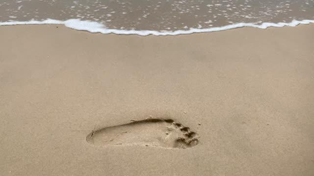 vídeos de stock e filmes b-roll de footprint in the sand - pegada
