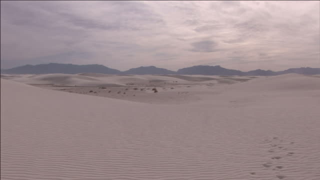 vídeos y material grabado en eventos de stock de footprints appear on the surface of the sand in white sands national monument. - monumento nacional