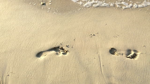 footprints in the sand at beach, sunset - footprint stock videos & royalty-free footage
