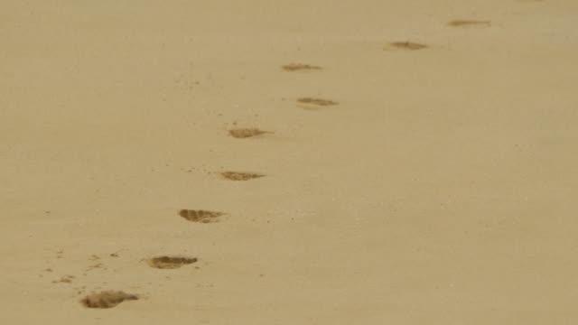vídeos y material grabado en eventos de stock de footprints in the sand at sandy beach, oahu, hawaii. - slow motion - pisada