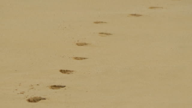 vídeos de stock e filmes b-roll de footprints in the sand at sandy beach, oahu, hawaii. - slow motion - pegada