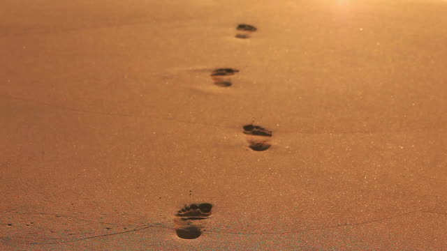 footprints in the sand - footprint stock videos & royalty-free footage