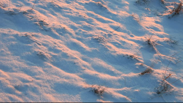 footsteps of a walker going uphill in the snow. - footprint stock videos & royalty-free footage