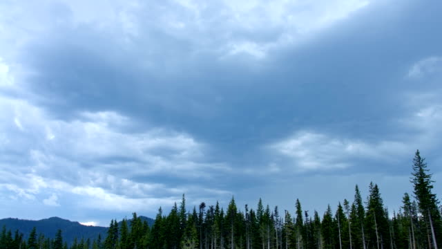 Foreboding skies storm and forest timelapse 1 Mt. Hood Spring Forest Oregon Cascade Mountains
