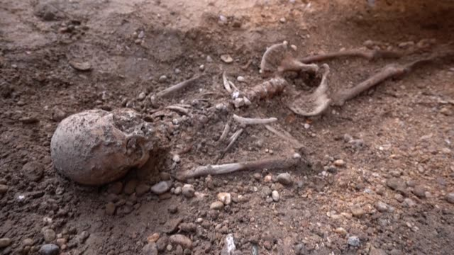 forensic experts will begin testing 15 skeletons uncovered at an ancient spanish chapel this week to see if any belong to 16th-century irish rebel... - archaeology stock videos & royalty-free footage