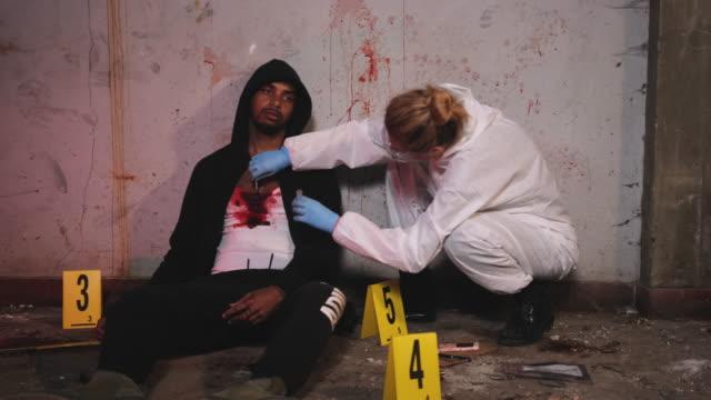 investigatore forense che raccoglie campioni di sangue sulla scena del crimine - attrezzatura per la ricerca video stock e b–roll
