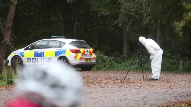 forensic investigators at watlington hill in oxfordshire after the body of a woman was discovered at the national trust estate. the body of a woman... - woodland stock videos & royalty-free footage