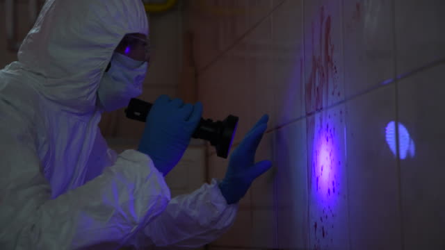 forensic scientist at work - luce ultravioletta video stock e b–roll