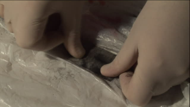 a forensic scientist uses tape to collect a sample of a black, dusty substance. - 法科学点の映像素材/bロール
