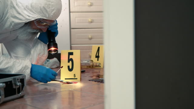 forensic scientist working at crime scene - crime stock videos & royalty-free footage