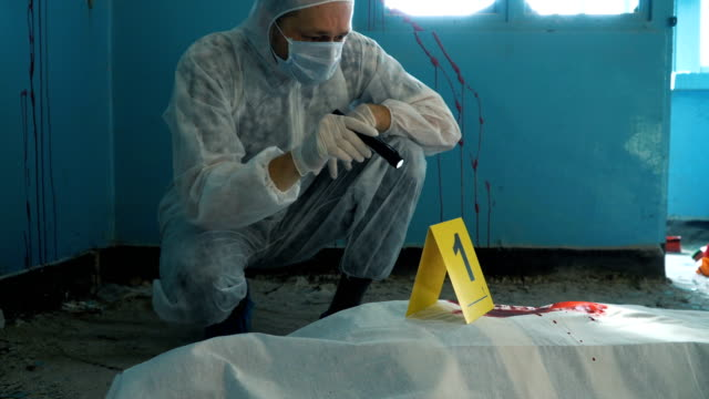 forensics man working in crime scene - gory of dead people stock videos & royalty-free footage