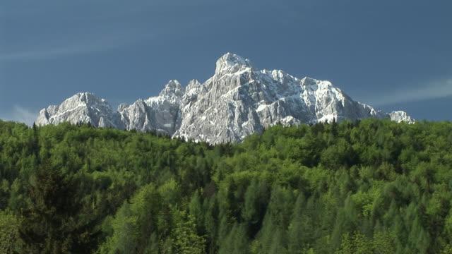 ws, forest and mountain, kranjska gora, gorenjska region, triglav national park, slovenia - triglav national park stock videos and b-roll footage