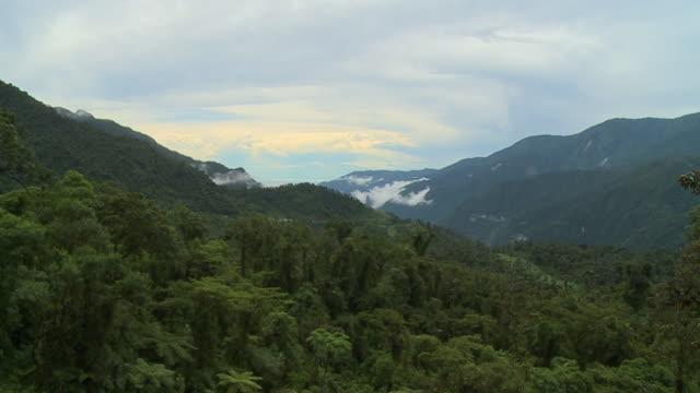 forest and mountains - gebäudefries stock-videos und b-roll-filmmaterial