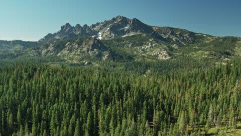 forest around sierra buttes - drone shot - californian sierra nevada stock videos & royalty-free footage