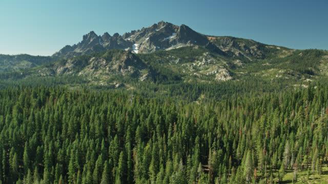 wald um sierra buttes - drohnen-schuss - amerikanische sierra nevada stock-videos und b-roll-filmmaterial