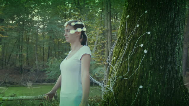 forest bathing therapy. woman connected to old tree with brain scanner. energy in nature. - human nervous system stock videos & royalty-free footage