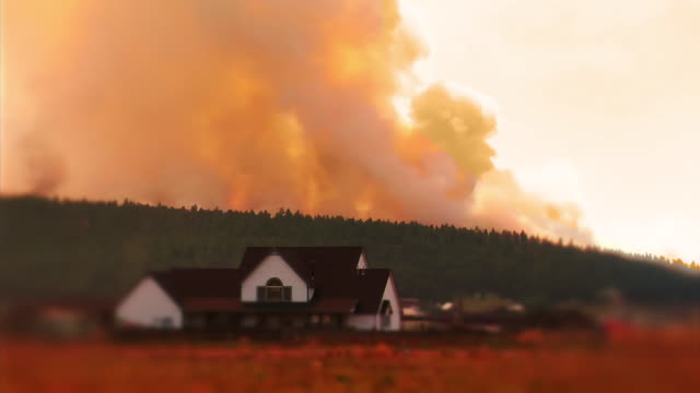 forest fire 1 - arizona stock-videos und b-roll-filmmaterial