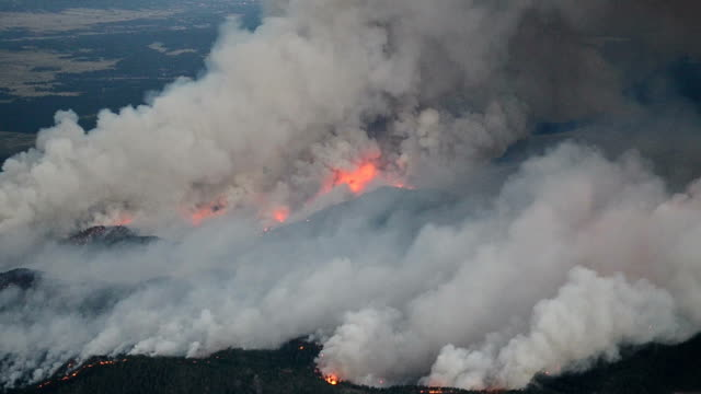 forest fire, aerial view - burning stock videos & royalty-free footage