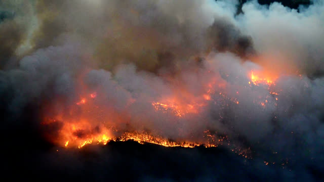 Forest fire, aerial view
