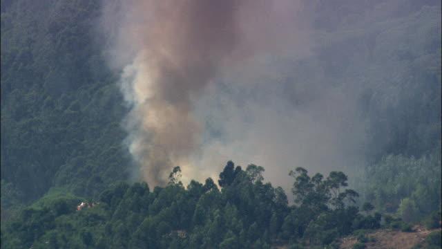 aerial ms forest fire / azinhaga, santarem, portugal - portugal stock videos & royalty-free footage