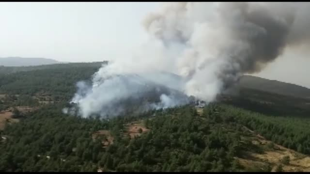 a forest fire broke out in the turkey's coastal city of mugla on may 20 as heat waves continued to grip the fire occurred in forestland in the... - mugla province stock videos & royalty-free footage