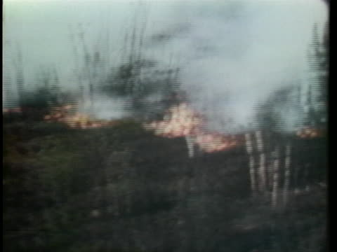 a forest fire continues to burn in alaska and firefighters snuff out smoldering roots - snuff stock-videos und b-roll-filmmaterial