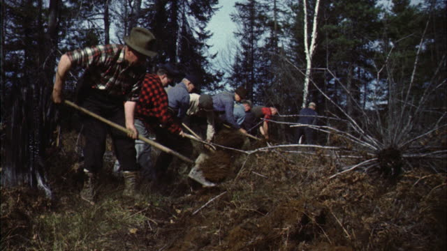 ms forest fire fighters digging ditches for fire break - only mature men stock videos & royalty-free footage