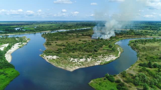 森林火災。草が燃えています。ショット空中ドローン - 湿地点の映像素材/bロール