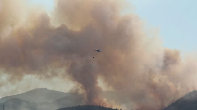 forest fire started in the location in balcova town, in city of izmir which is the 3rd metropolitan city of turkey on july 30, 2020. minister of... - landwirtschaftsminister stock-videos und b-roll-filmmaterial