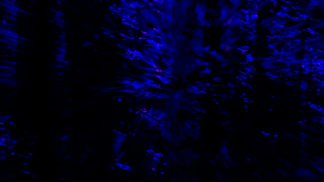 UNTAMED VIEW : forest - flash through, blue (LOOP)