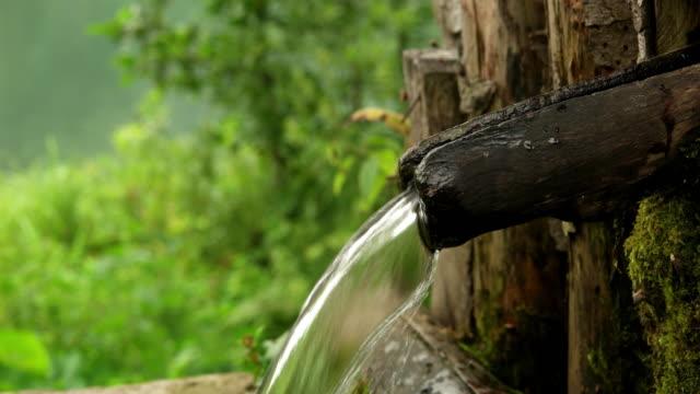 vídeos y material grabado en eventos de stock de agua de fuente del bosque - fuente corriente de agua