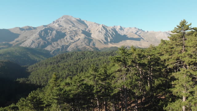 Forest in Kizildag National Park with the view of Dedegol Mountain in Melikler Plateau, Yenisarbademli, Turkey