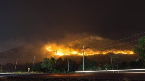 forest in the fire near a road, wildfire at night, time lapse video - climate stock videos & royalty-free footage