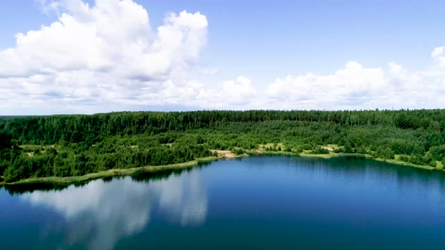 forest lake and pine forest around. from a bird's eye view. - quarry stock videos & royalty-free footage
