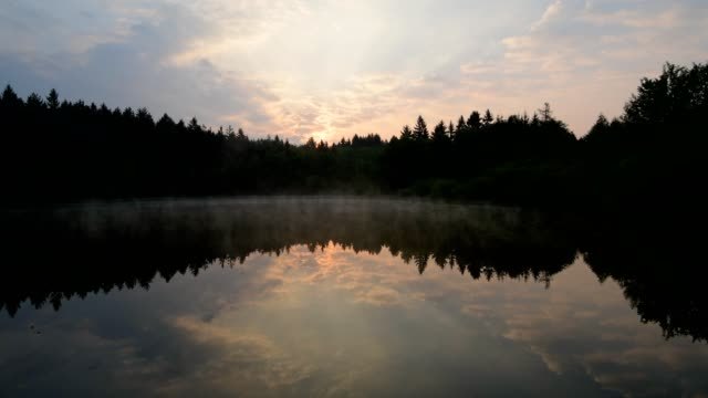 Forest lake at sunrise in spring,