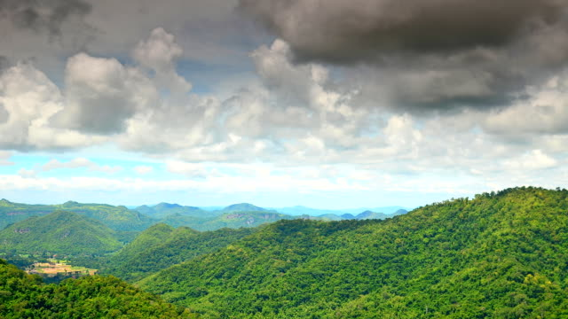 forest landscape at khao yai national park, thailand, world heritage - national landmark stock videos & royalty-free footage